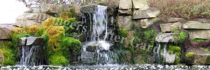 Water feature maintenance